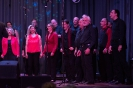 Just Sing It - 25 Jahre Vox Humana_51